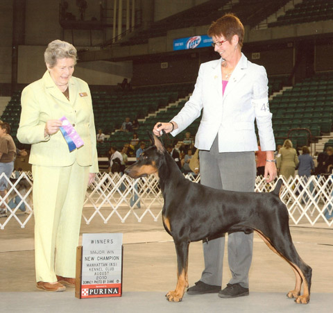 "Ch. Veedoc's National Debut v LeMils CGC ROM is shown finishing his Championship. ""Nash"" is owned by members Debbie and Rick Castro"