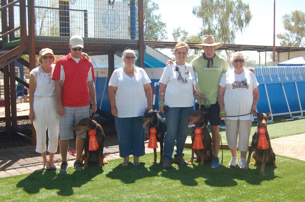 Newly Crowned Dock Novice Dogs. . . Dolce, Roosevelt, Izzy & Serri