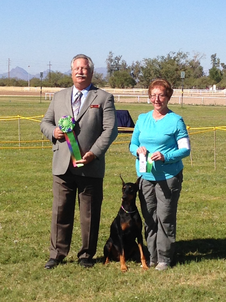 CH Gallants Classified Adds V Ciden owned by Debby and Rick Castro and handled by Debby Castro finished their CD title on Saturday with Addy receiving fourth place ribbon in the group.