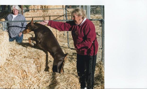 Serri & Judie Walters barn hunting!